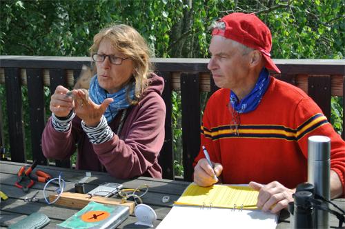 Gittan och Tysk Jan mäter fågeln på alla möjliga sätt