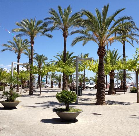 Längs strandpromenaden i Port Alcudia, Mallorca
