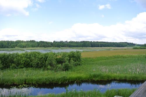 Kyrkbyviken, Vika mellan Borlänge och Falun