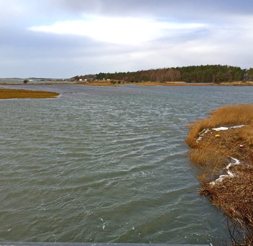 Översvämning på Norra Strandängen, Stora Amundö