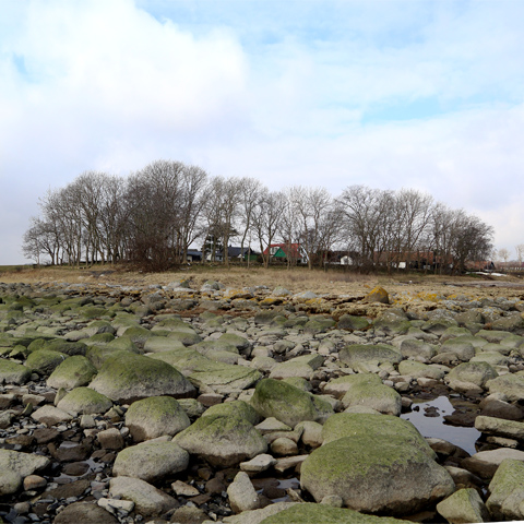 Lågvatten vid Gislövshammar